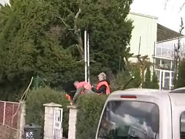 77tiletý muž se zabil při řezání stromu