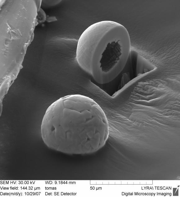 Co dokáží mikroskopy firmy Tescan