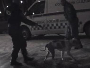 Strážníci odvádějí agresivního psa