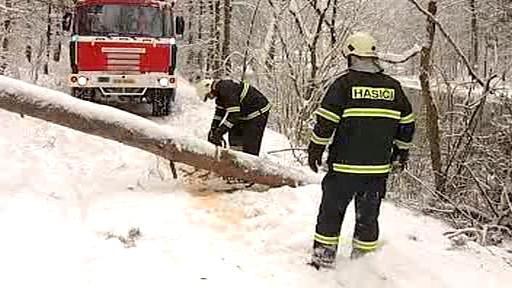 Hasiči odklízejí spadlý strom