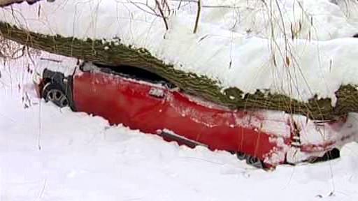Strom se pod tíhou sněhu zřítil na osobní auto