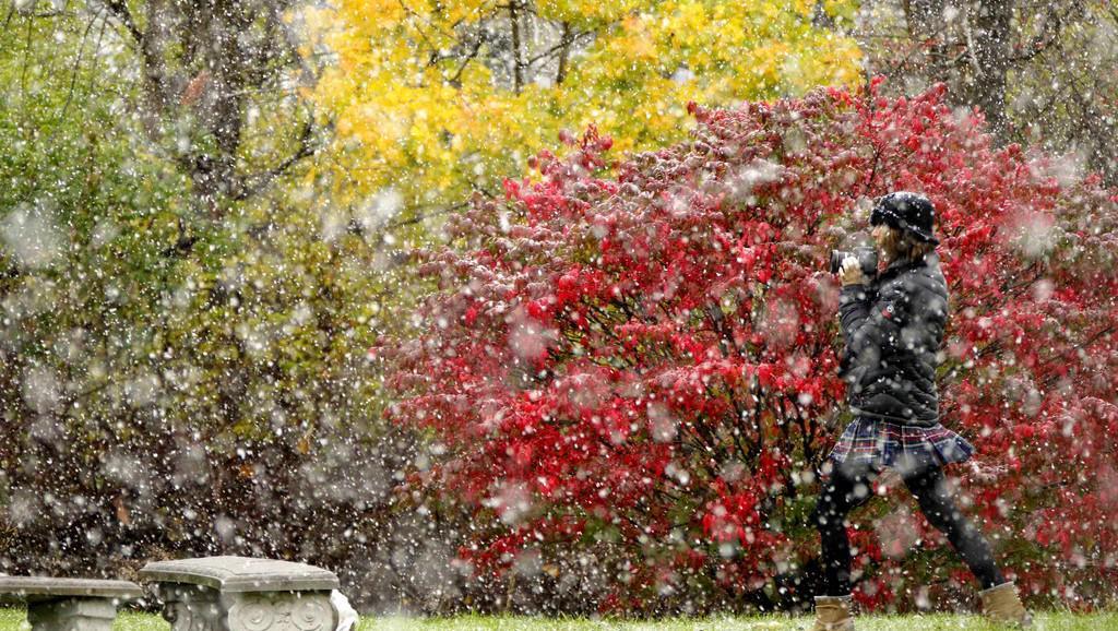 Sněhová bouře