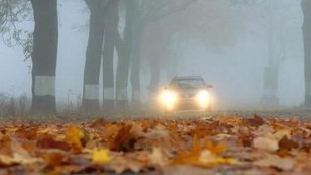 Chladný podzim