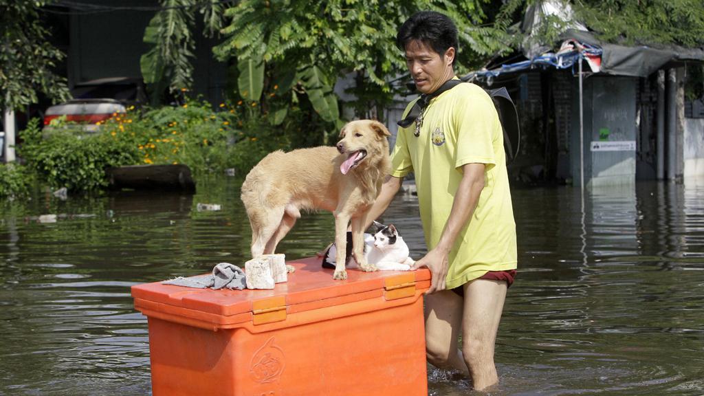 Povodně v Thajsku