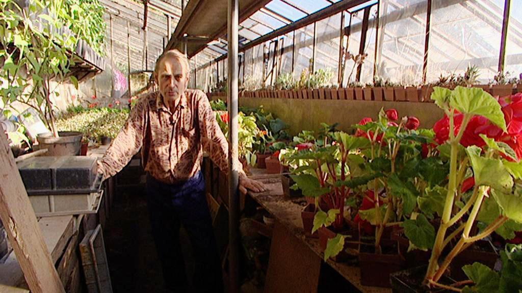 Zahradník René Mandys