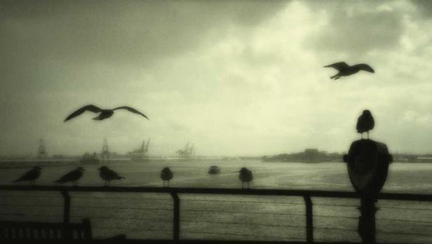 Fotografie Jitky Horázné