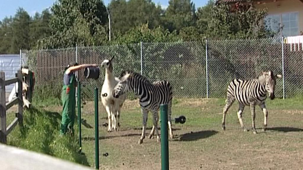 Větrovská zoo
