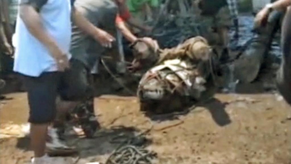 Na Filipínách chytli obřího krokodýla