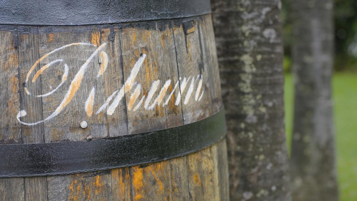 Luxusní rum