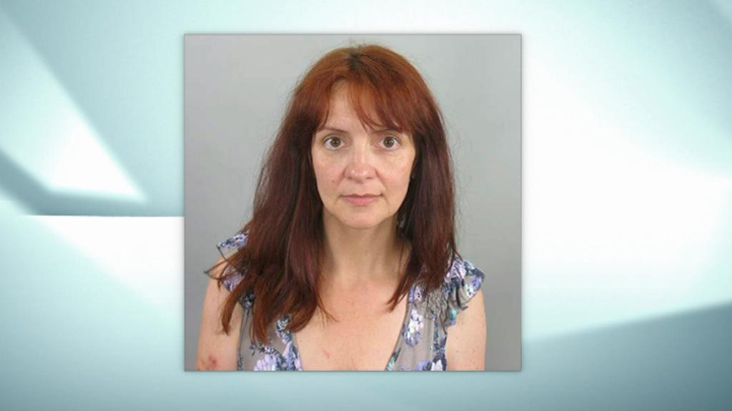 Britka, která unesla dceru z kojeňáku