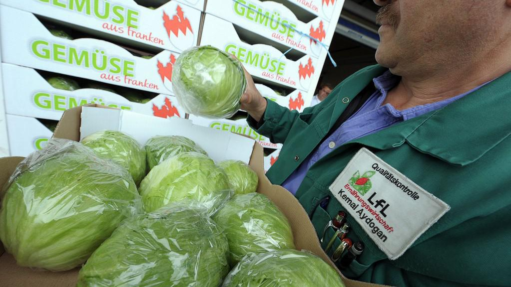 Evropská zelenina