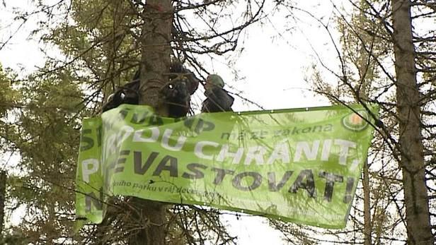 Aktivisté bránící kácení na Šumavě