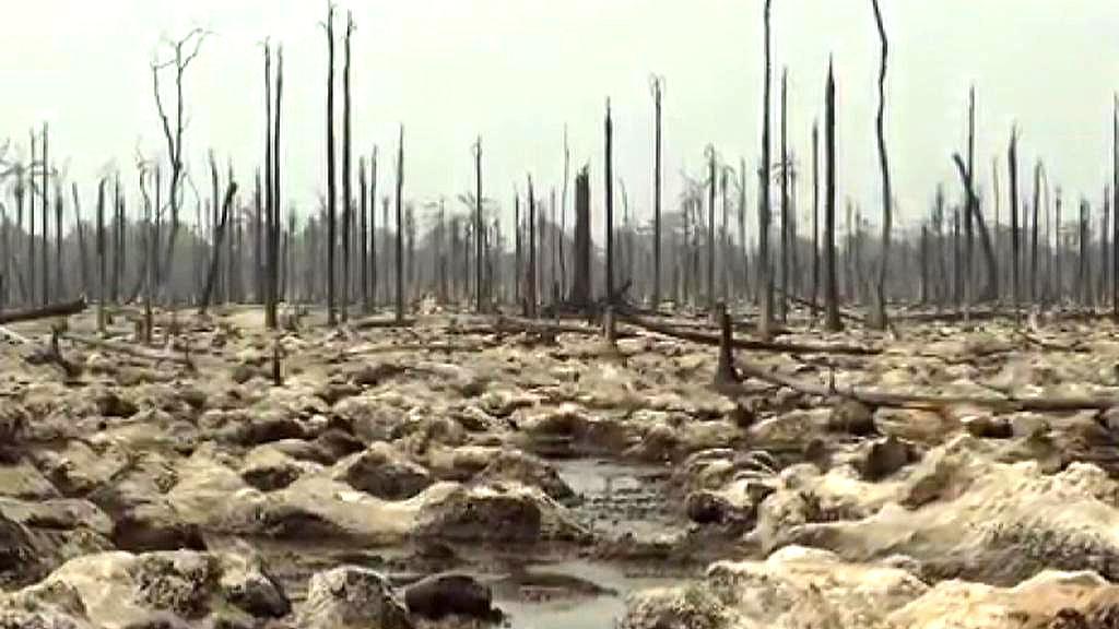 Oblast poničená ropou