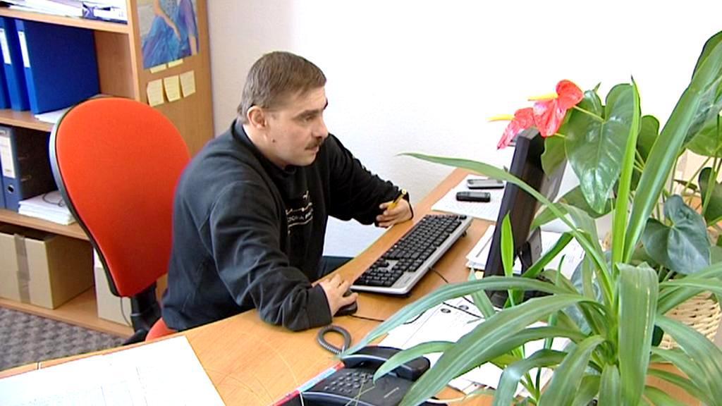 Zaměstnávání handicapovaných