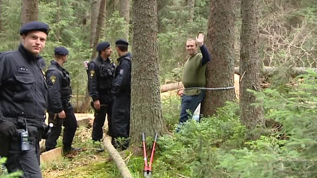 Aktivista přivázaný ke stromu