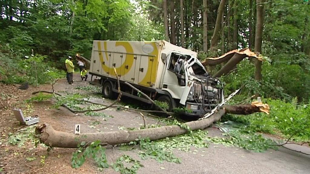 Padající strom zavinil nehodu dodávky