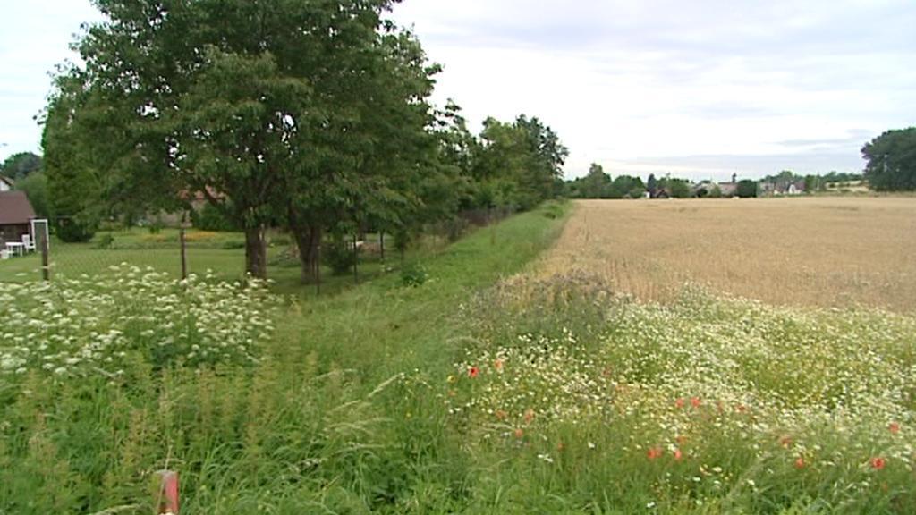 Pozemek firmy Luďka Zahradníka