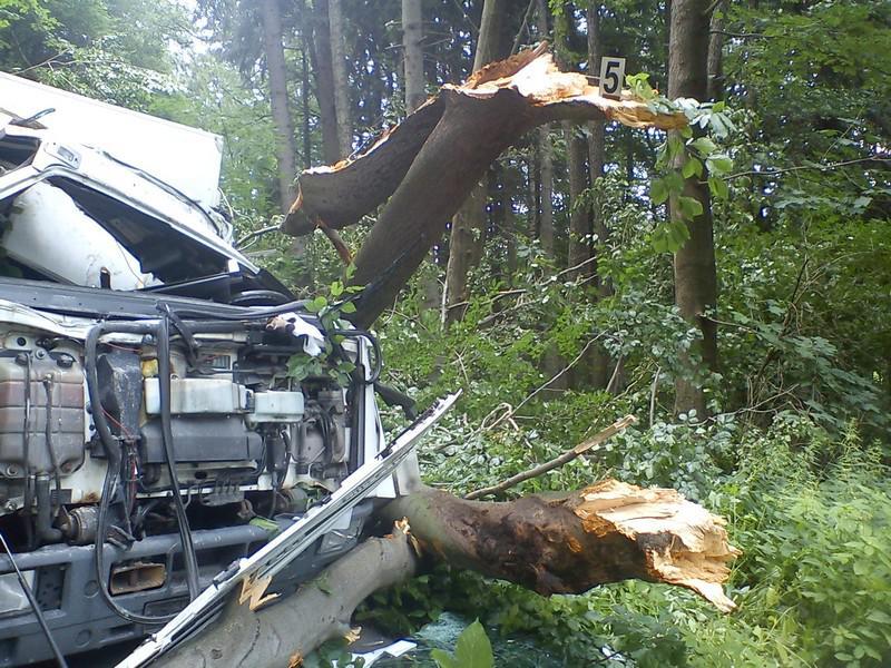 Strom zničil auto