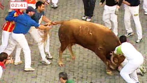 Býk útočí na běžce