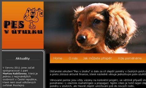 Sdružení Pes v útulku