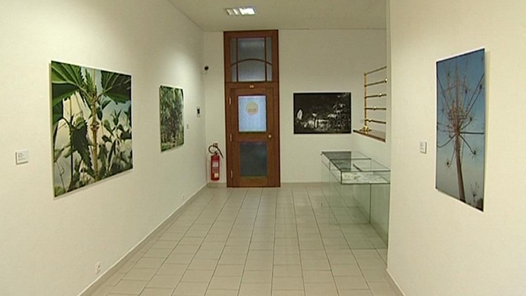 Východočeská galerie