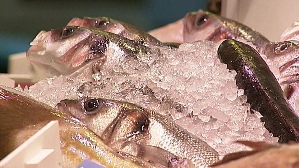 Mražené ryby