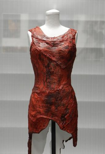 Šaty Lady Gaga ze syrového masa