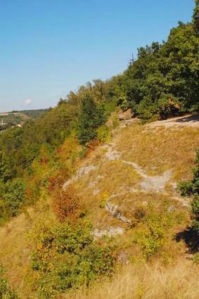 Národní přírodní památka Radouč