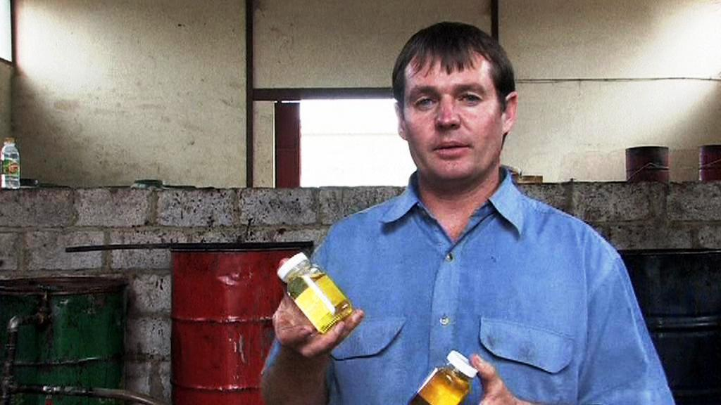 Olej z jatrofy