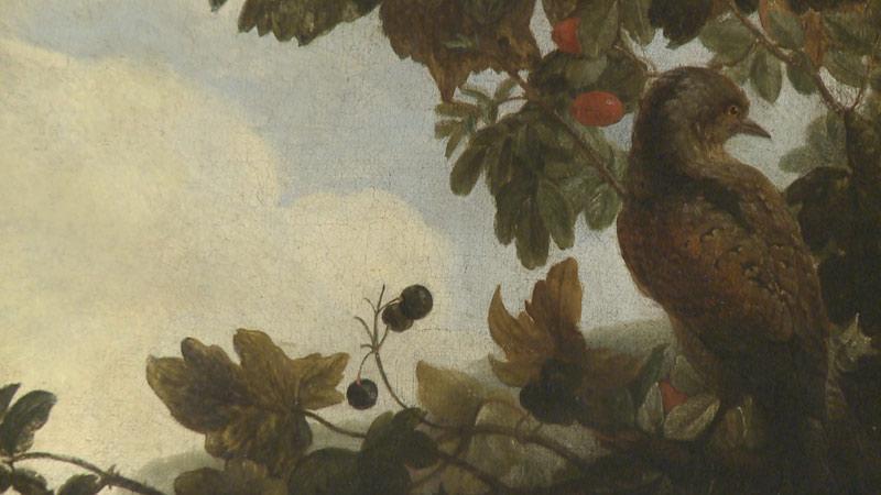 Jan Rudolf Bys / Ptactvo v přírodě (detail)