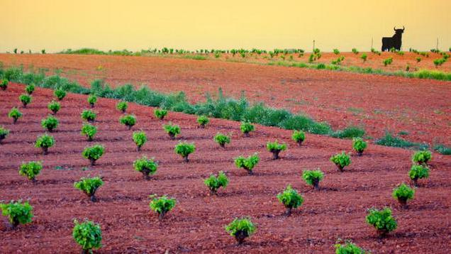 Španělský region Kastilie-La Mancha