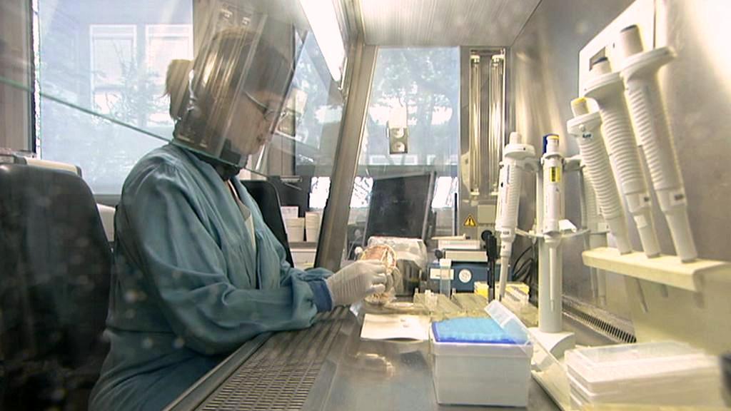 Laboratorní testy
