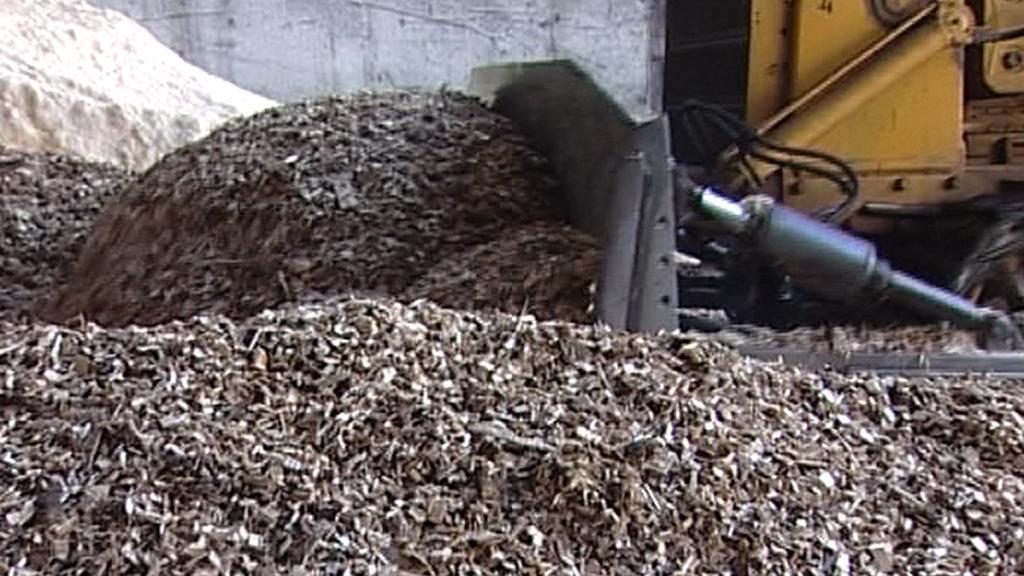Dřevní odpad