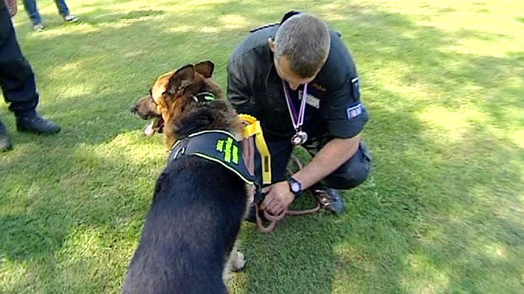 Mezinárodní mistrovství psovodů