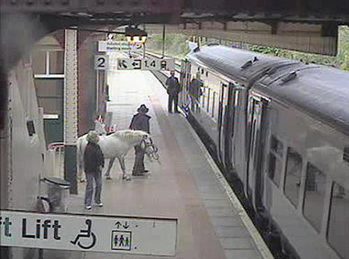 Muž s poníkem na nádraží ve Wrexhamu