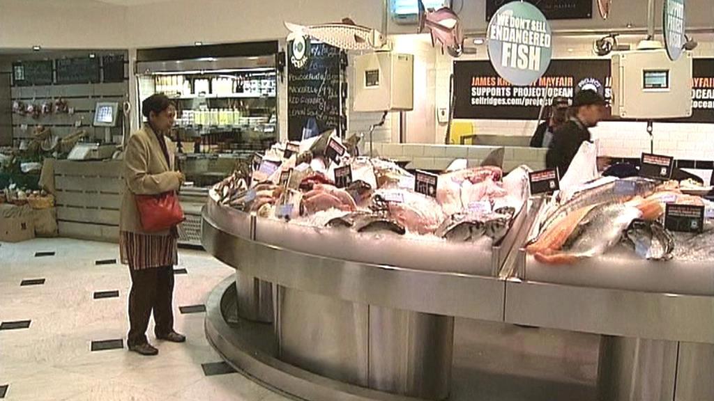 Nabídka ryb u Selfridges