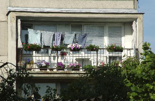 Nájemní bydlení