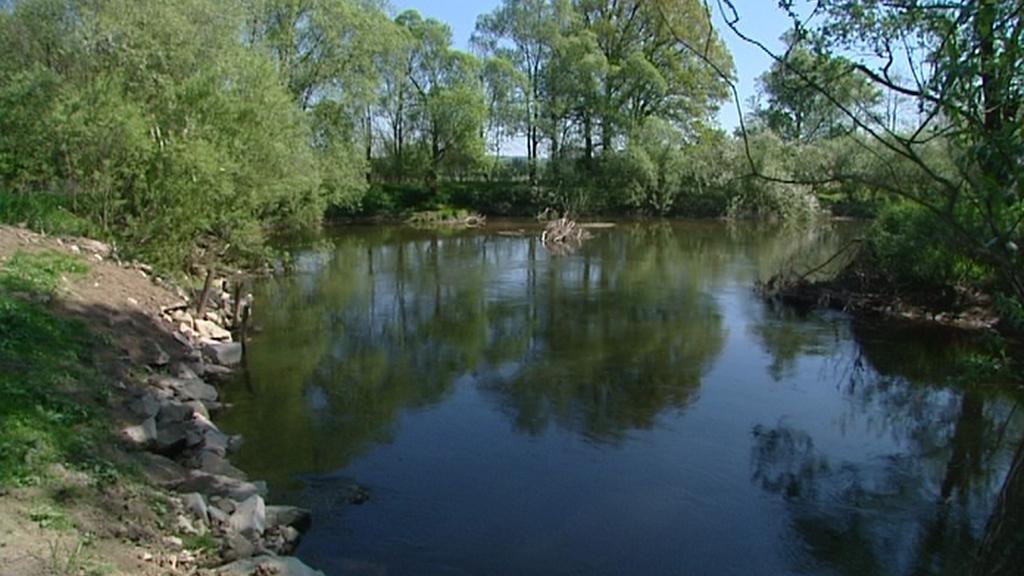 Koryto řeky Orlice