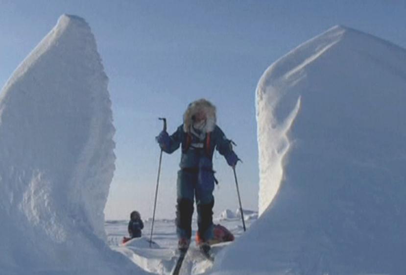 Vědci v Arktidě
