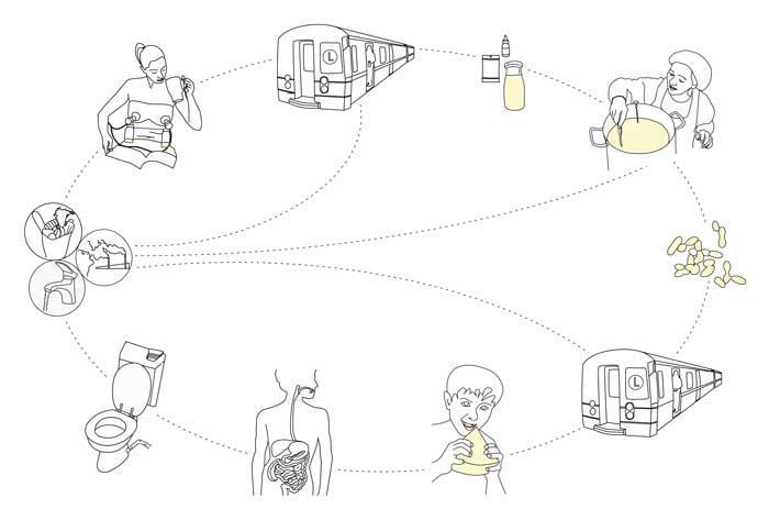 Analýza cyklu lidského sýra podle Miriam Simunové
