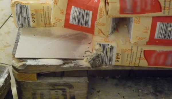 Stopy po myších