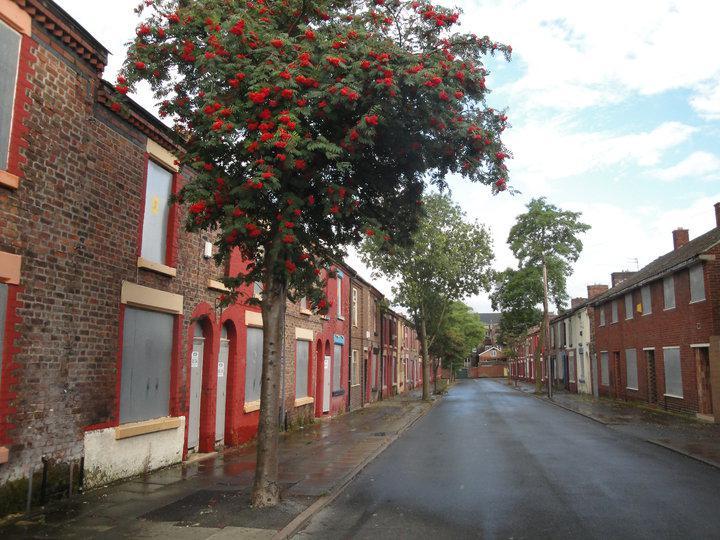 Liverpoolská Madryn Street