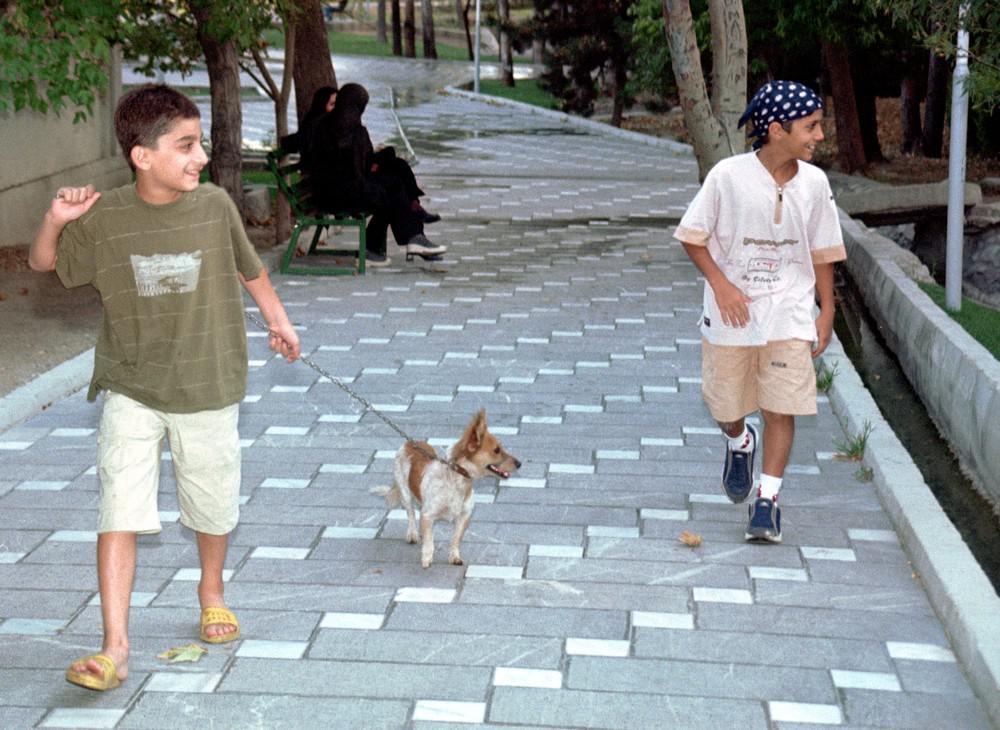 Íránští chlapci na procházce se svým pejskem v teheránském parku