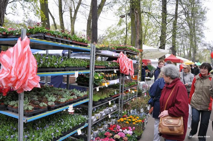 Jarní výstava v Lounech