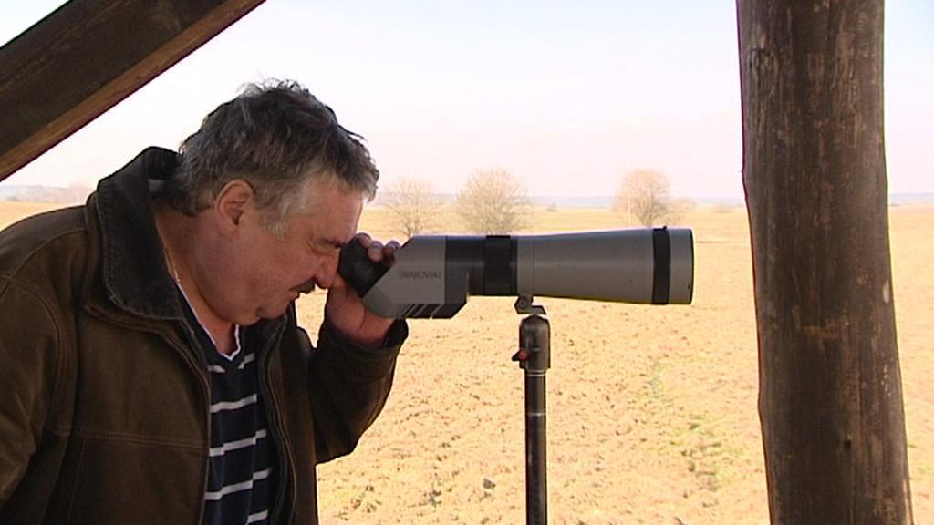 Pozorovatel na ptačí rozhledně