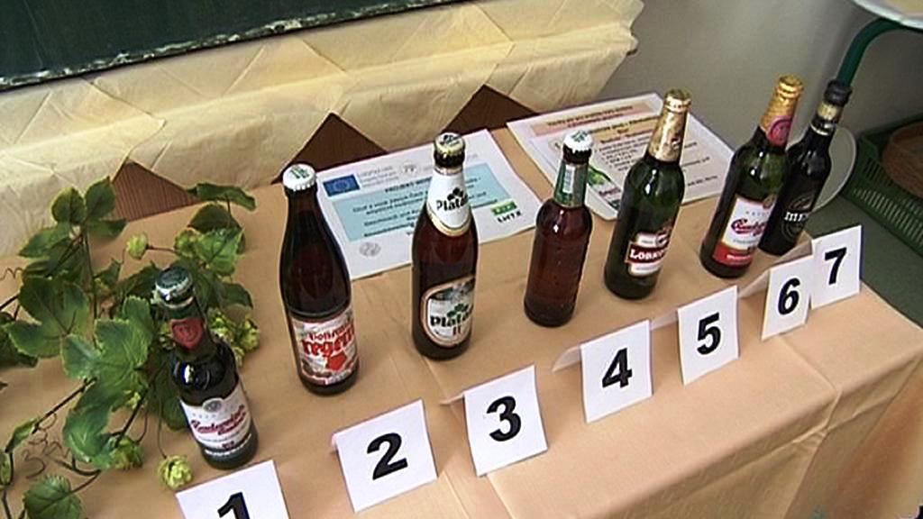 Degustace piv