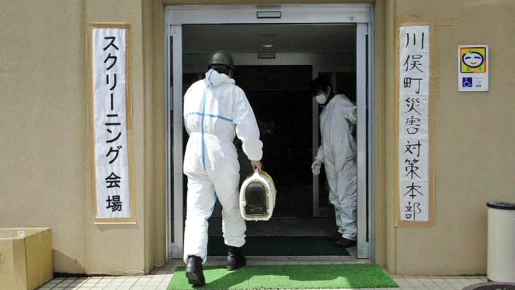 Měření radioaktivity v okolí Fukušimy