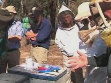 Včelaři