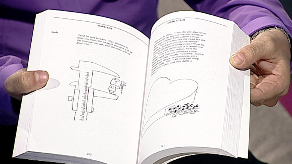 Bible ilustrovaná Ivanem Steigerem
