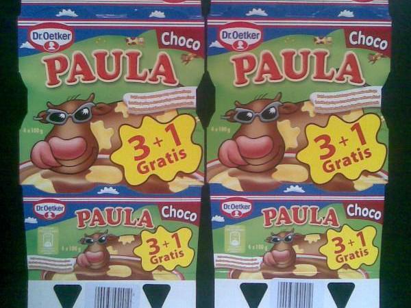 Pudink Dr. Oetker PAULA Choco